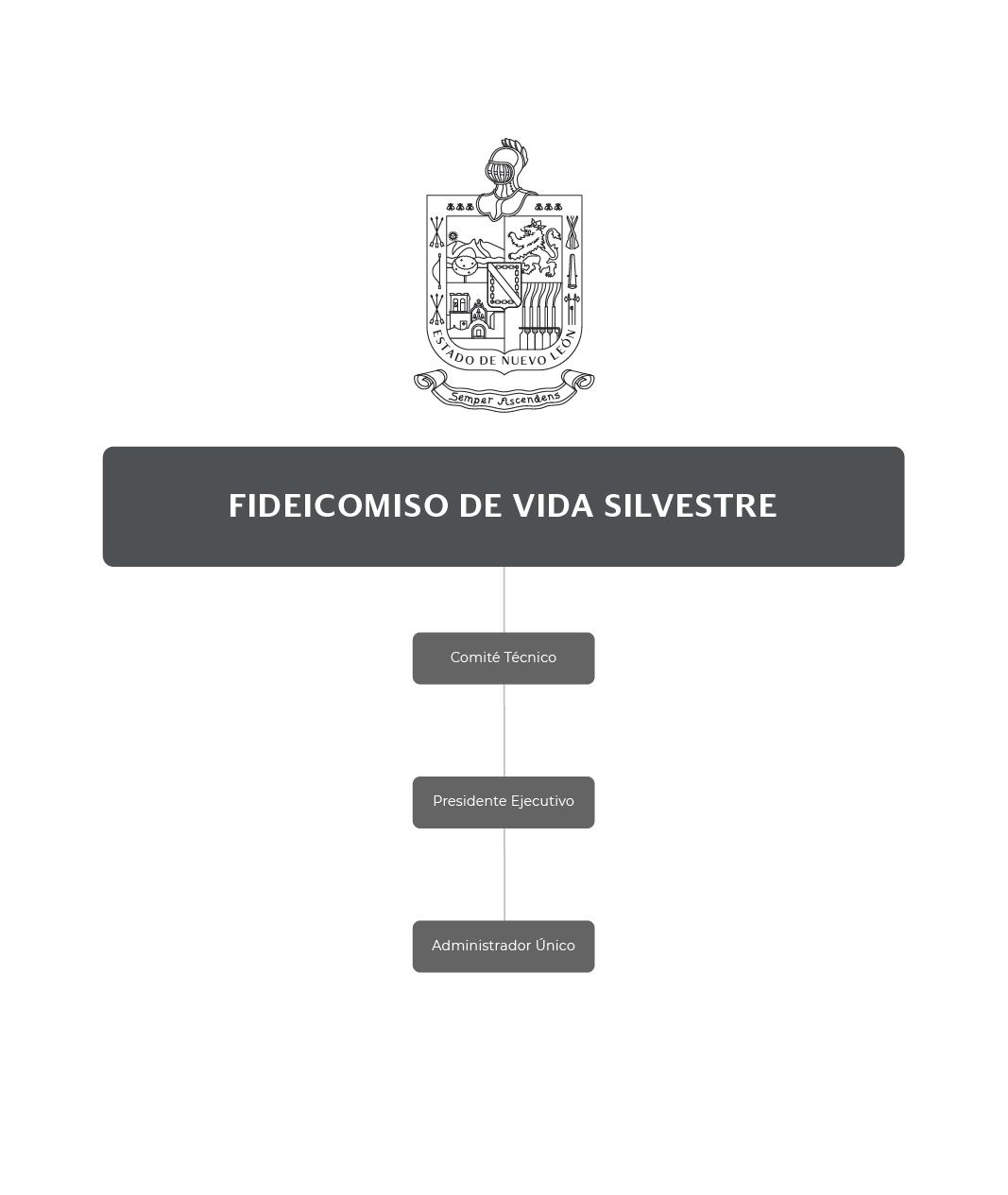 Organigrama del Fideicomiso de Vida Silvestre