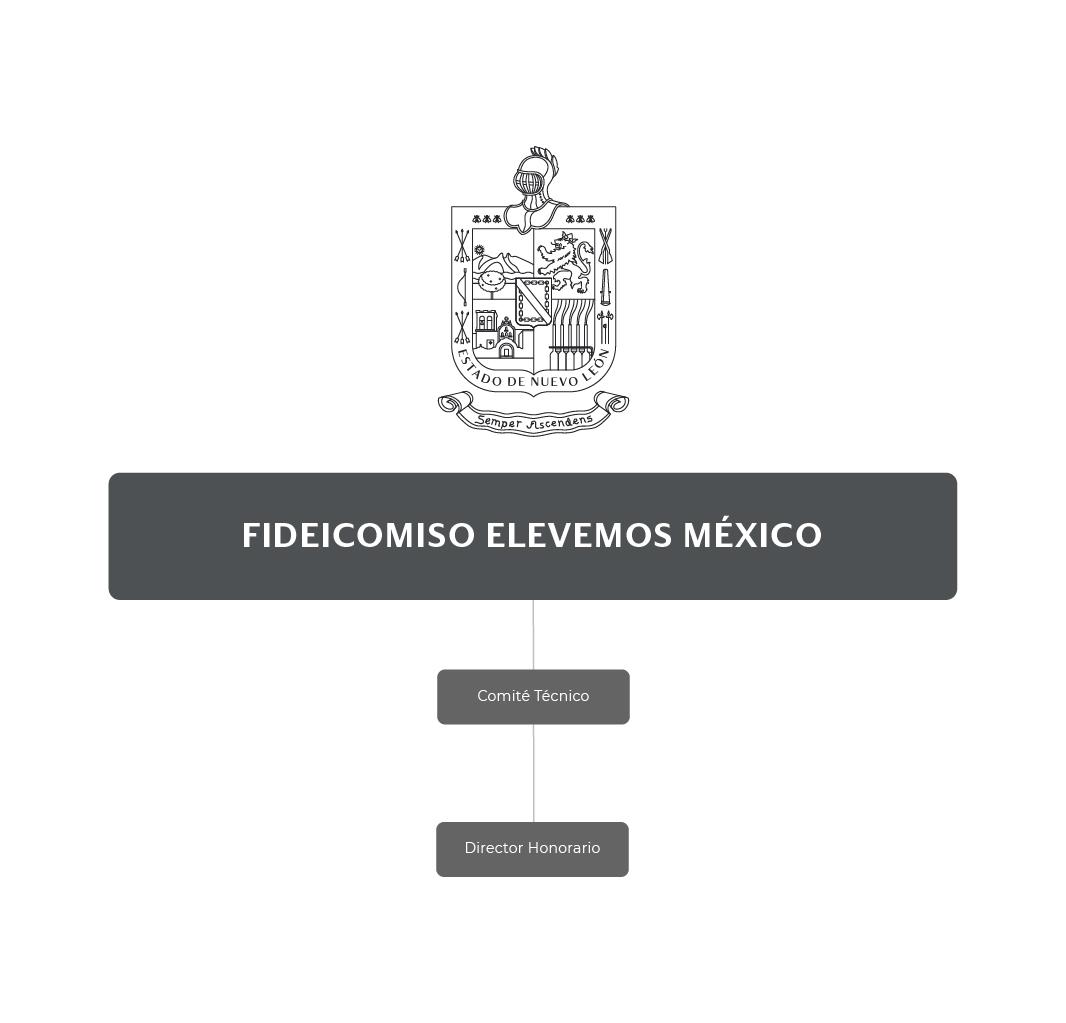 Organigrama del Fideicomiso Elevemos México