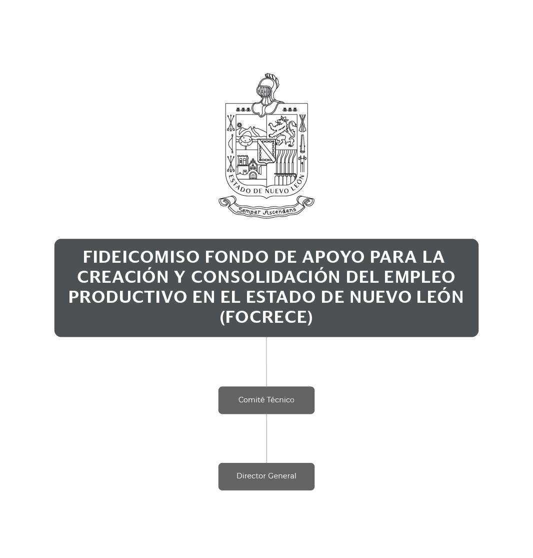 Organigrama Fideicomiso Fondo de Apoyo para la Creación y Consolidación del Empleo Productivo en el Estado de Nuevo León (FOCRECE)