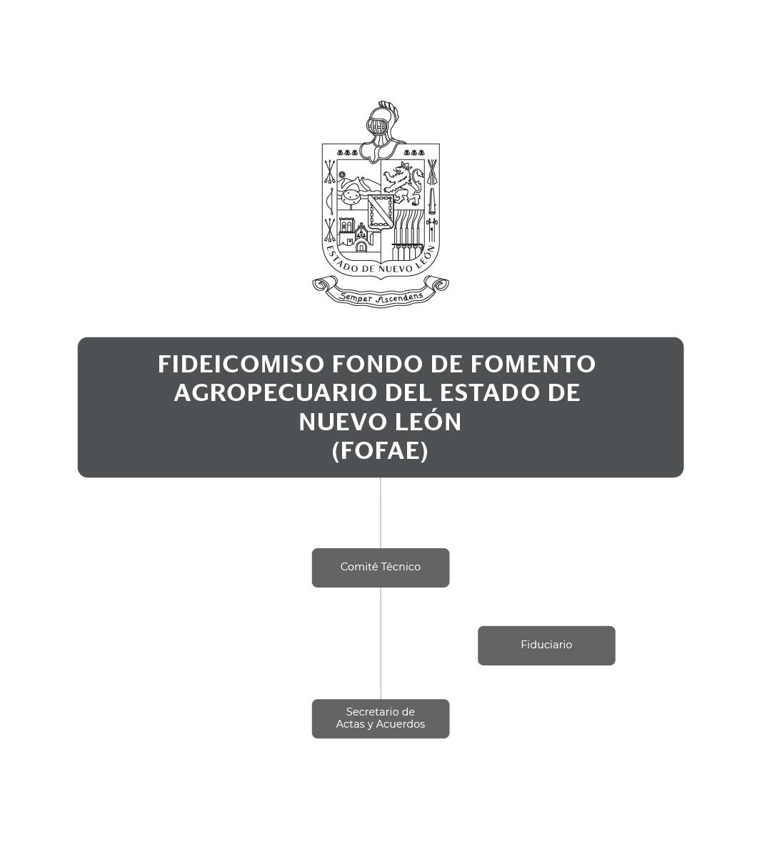 Organigrama del Fideicomiso Fondo de Fomento Agropecuario del Estado de Nuevo León (FOFAE)