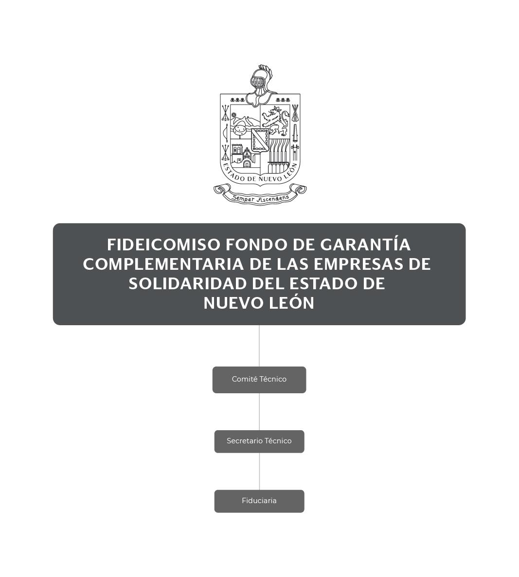 Organigrama del Fideicomiso Fondo de Garantía Complementaria de las Empresas de Solidaridad del Estado de Nuevo León