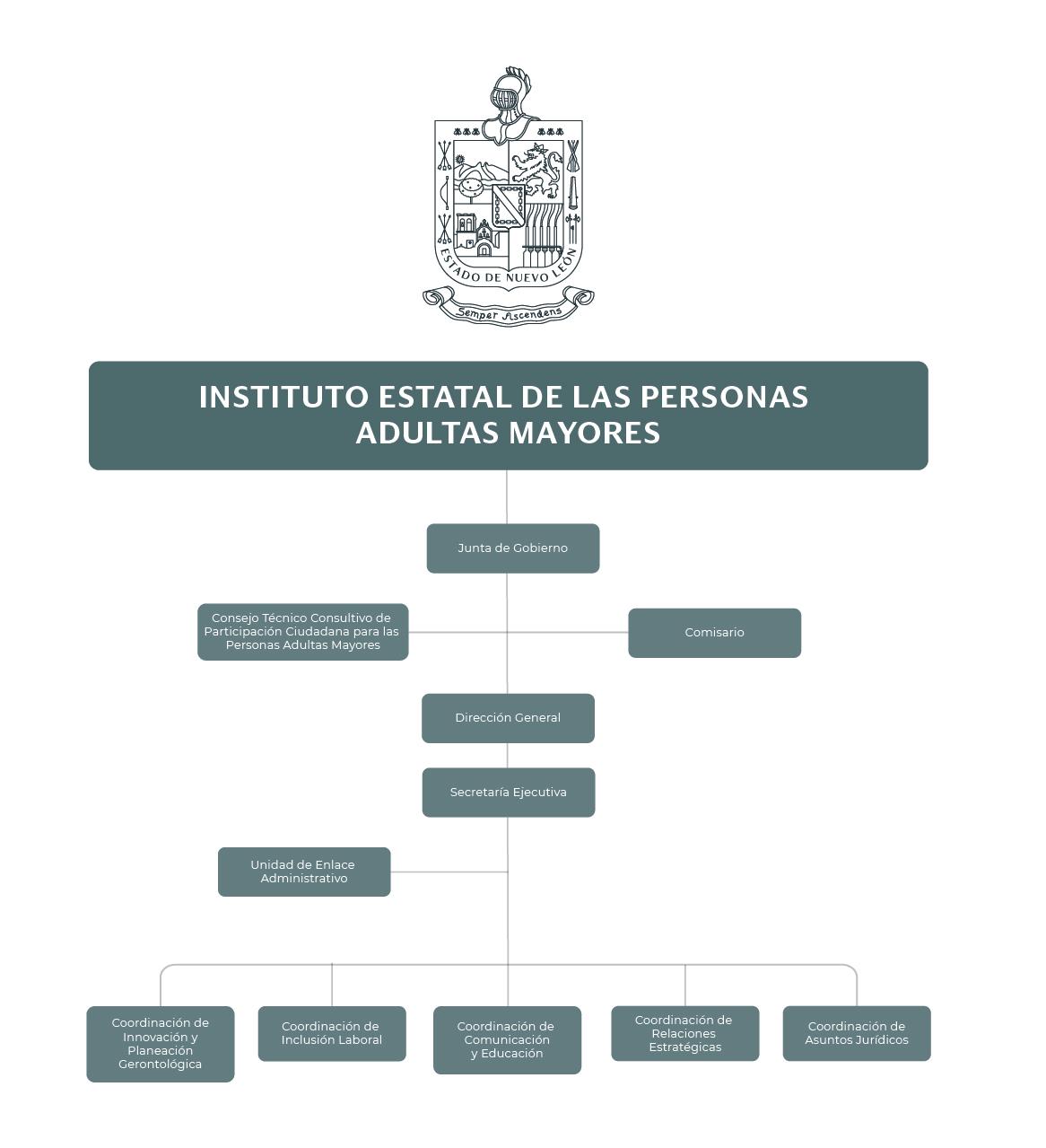 Organigrama del Instituto Estatal de las Personas Adultas Mayores