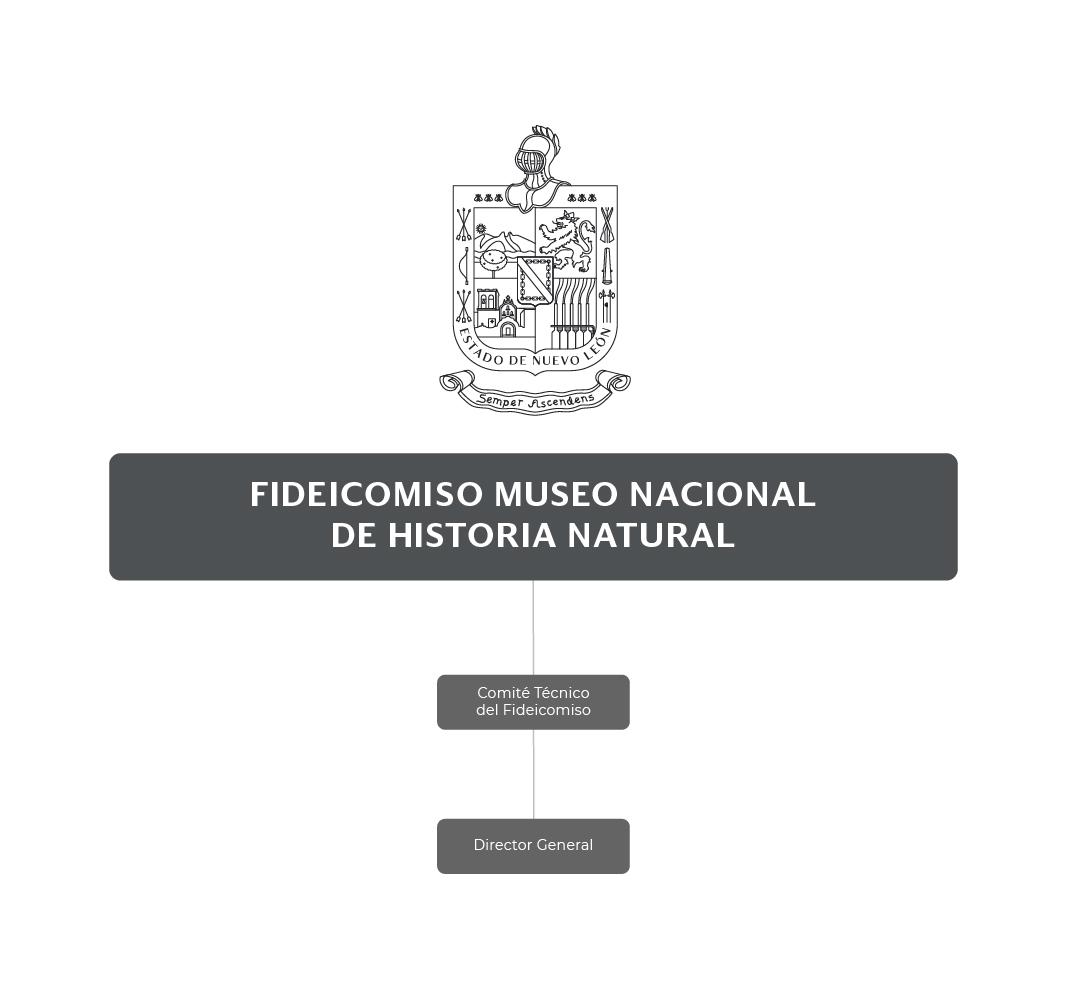 Organigrama del Fideicomiso Museo Nacional de Historia Natural