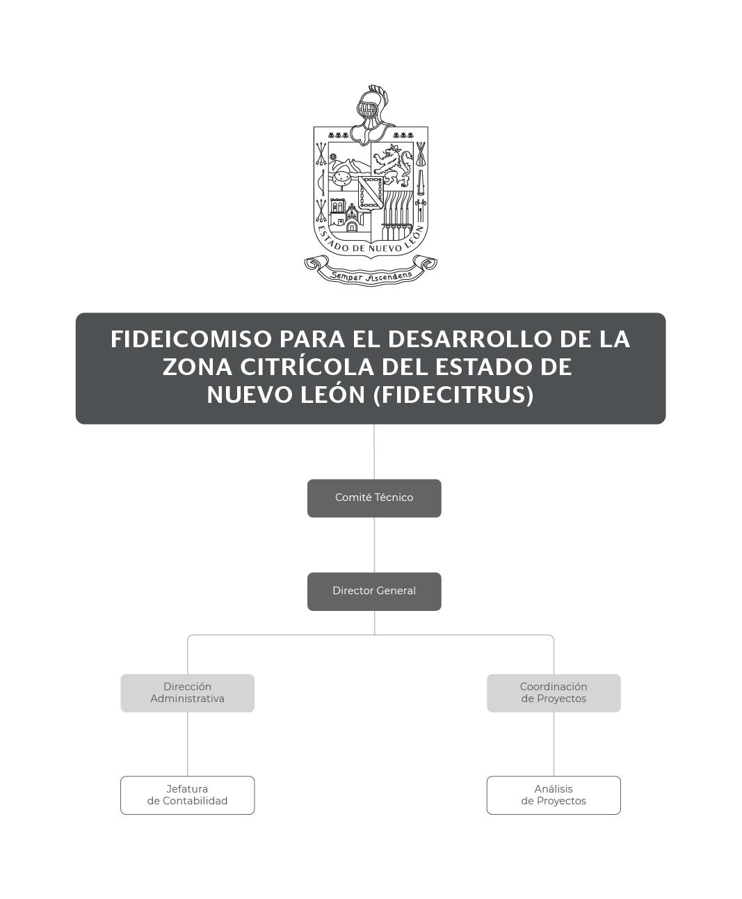 Organigrama del Fideicomiso para el Desarrollo de la Zona Citrícola del Estado de Nuevo León