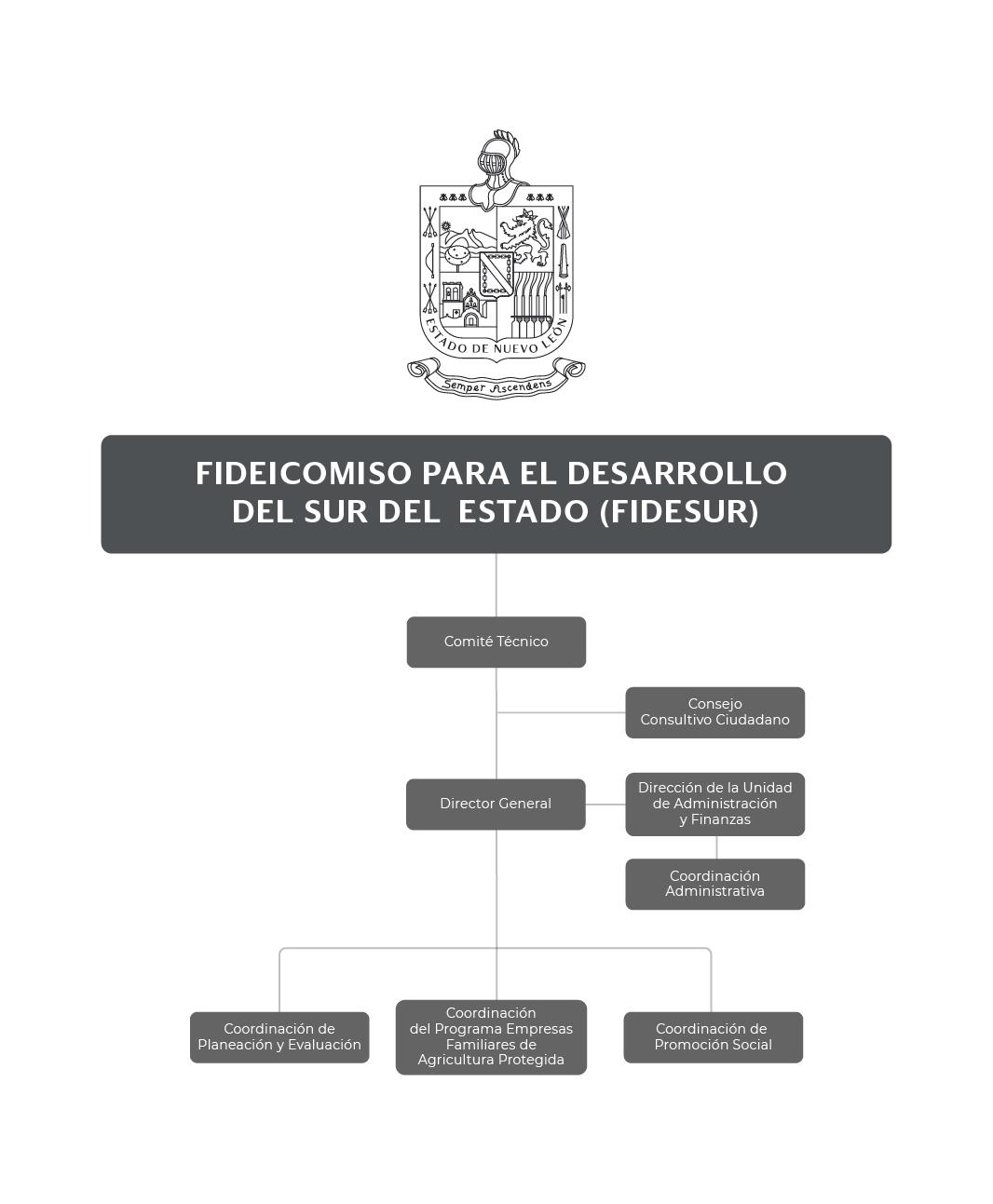 Organigrama del Fideicomiso para el Desarrollo del Sur del Estado de Nuevo León (FIDESUR)