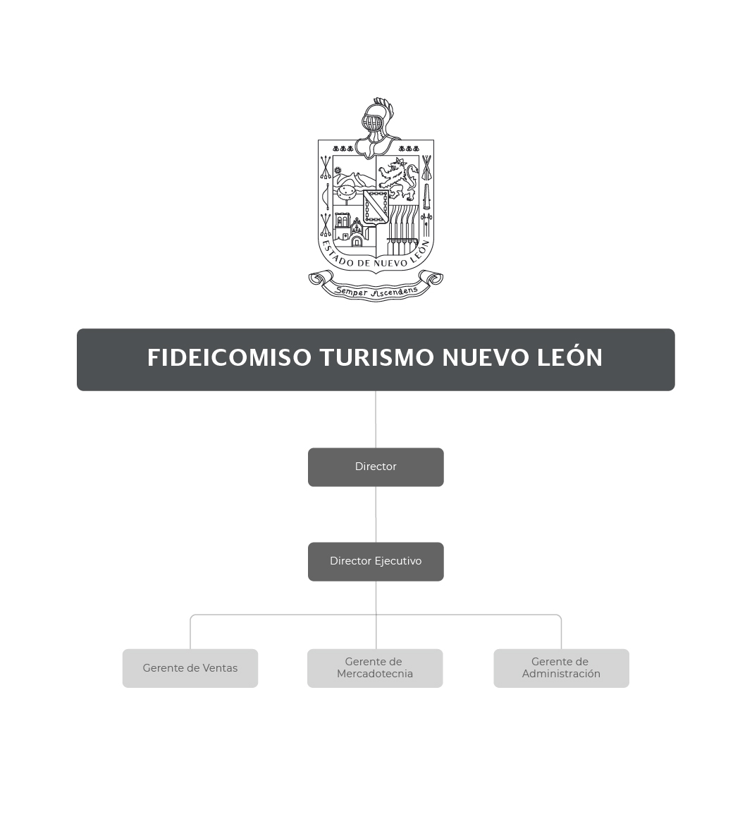 Organigrama del Fideicomiso Turismo Nuevo León
