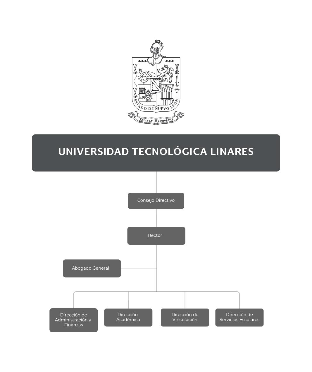 Organigrama de la Universidad Tecnológica Linares