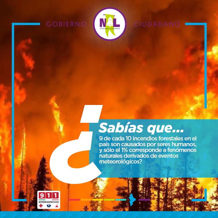 Medidas Preventivas Para Evitar Incendios Forestales Nlgobmx