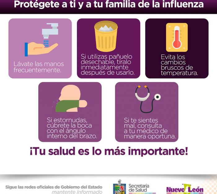 Protégete de la influenza