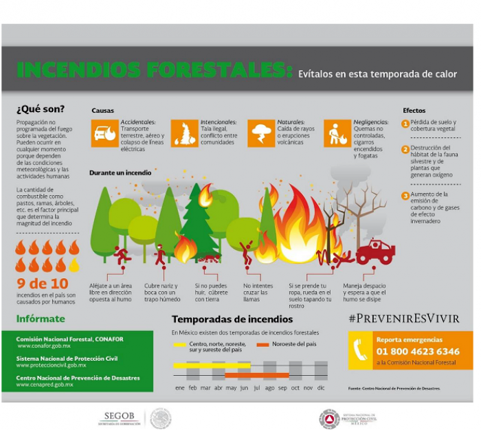 Causas de incendios forestales