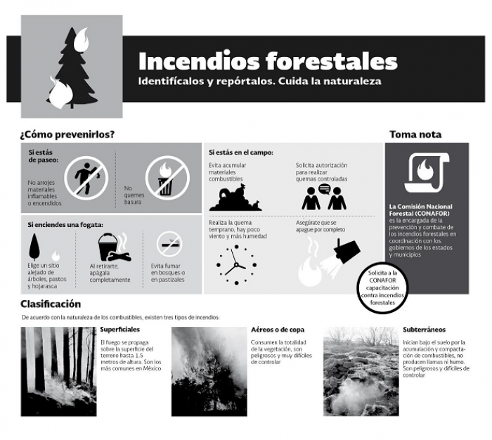 Cómo identificar un incendio forestal