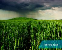 boletín_climático_febrero