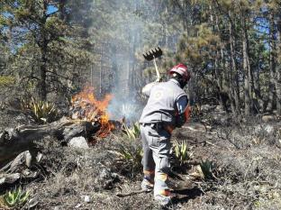 Evita incendios forestales