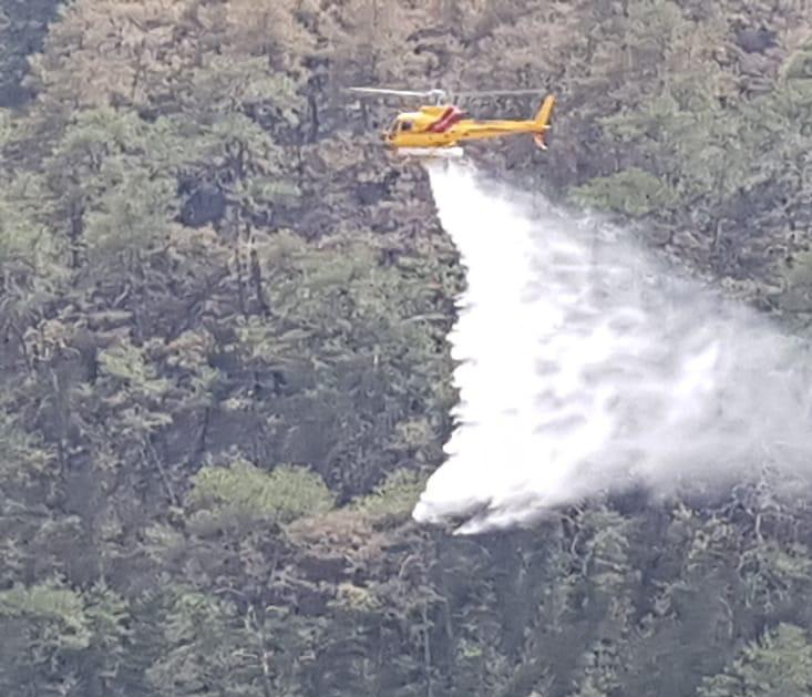Protección Civil NL controla incendio forestal en Sierra de Santiago