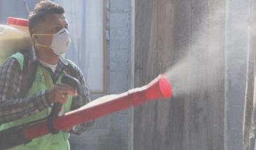 dengue destacados