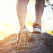XV Caminata por la salud