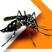 Zika, Dengue y Chikungunya