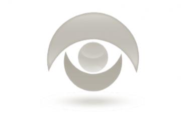 logo_contraloria_social_gris