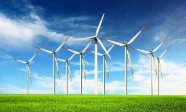Desarrollo de proveedores locales de la industria energética