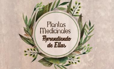 Plantas medicinales, aprendiendo de ellas.