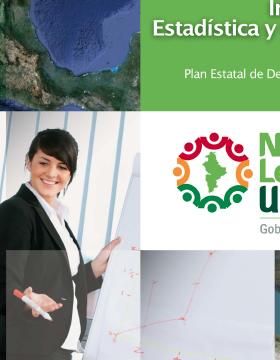 Programa sectorial de Información Estadística y Geográfica