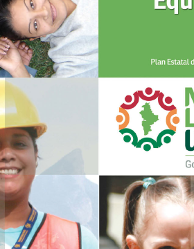 Programa sectorial de equidad de género