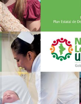 Programa sectorial de Salud