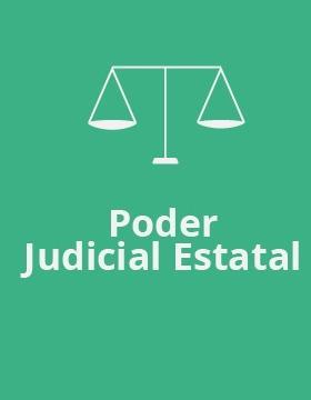 Poder judicial estatal