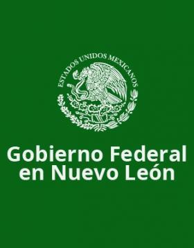 Gobierno federal en NL