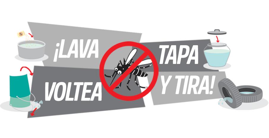 Recomendaciones zika, dengue y chikungunya