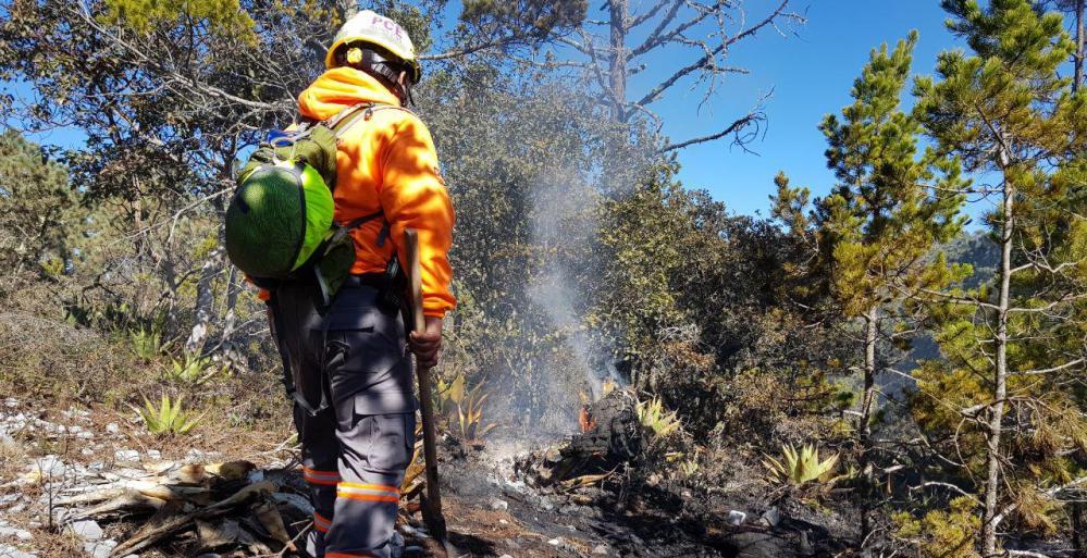 Nuevo León con acciones en marca: incendios